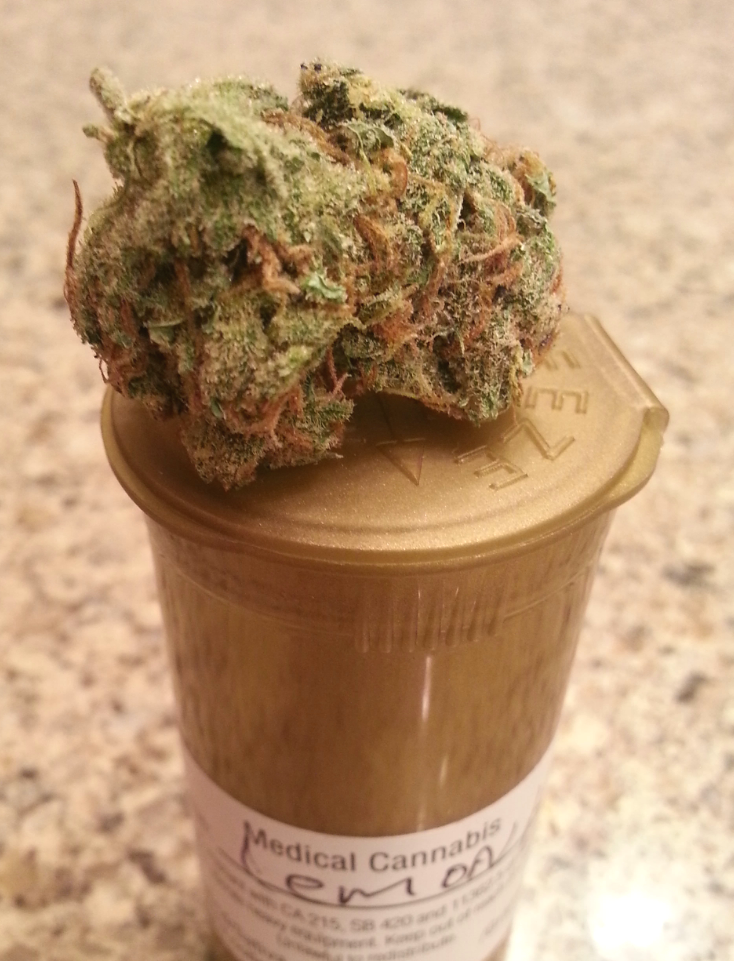 Lemon Haze from Saddleback Organics Medical Marijuana Review