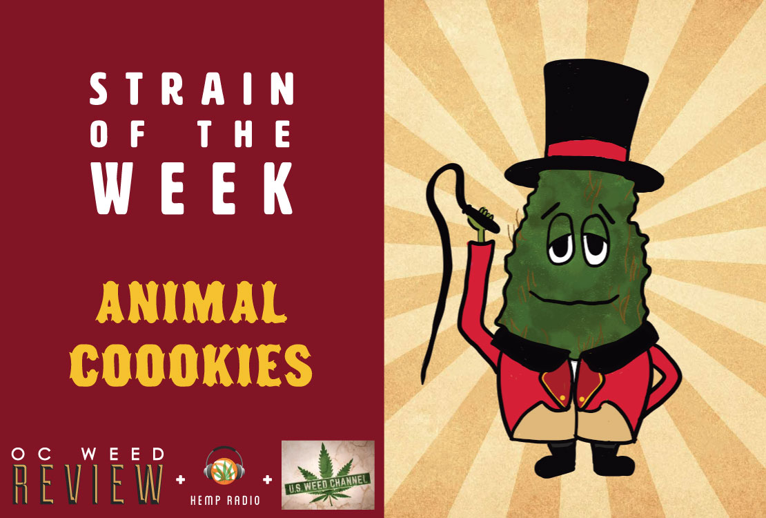 Strain of the Week: May 17, 2015 (Animal Cookies)