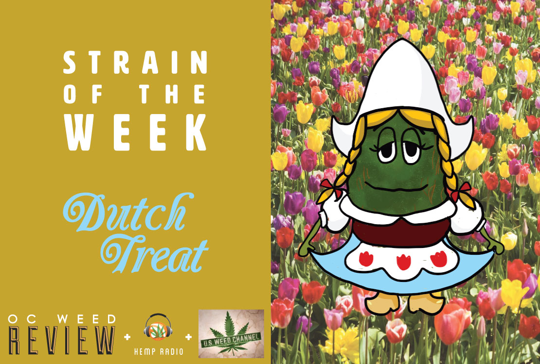 Strain of the Week: May 24, 2015 (Dutch Treat)
