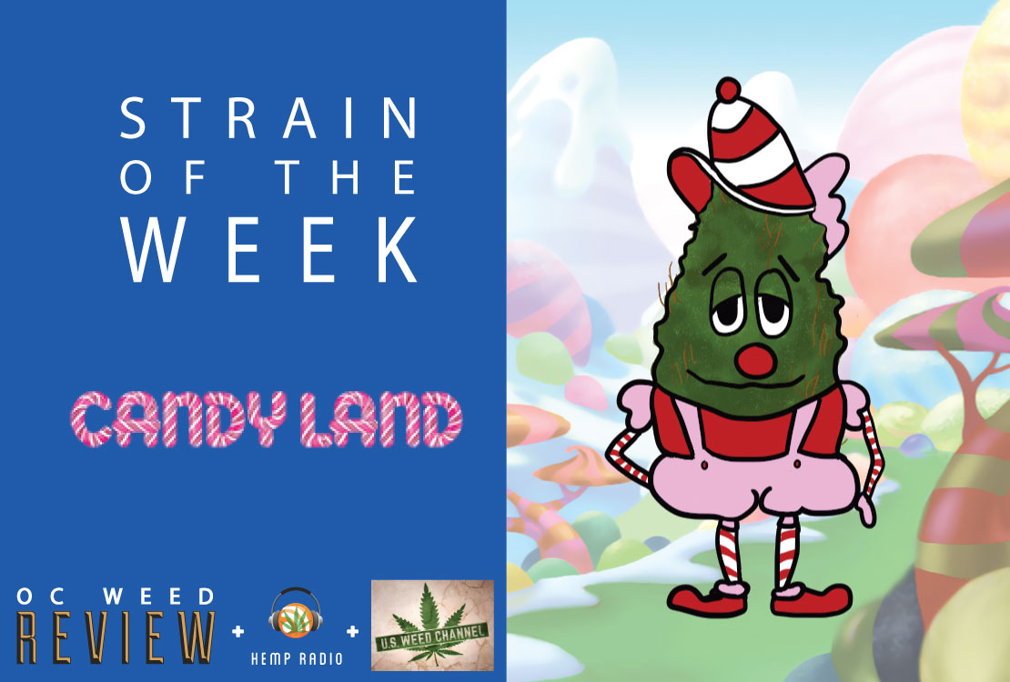 Candyland strain review