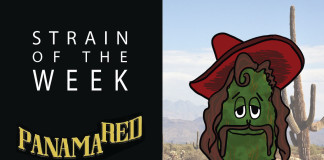Strain of the Week: Aug. 2, 2015 (Panama Red)