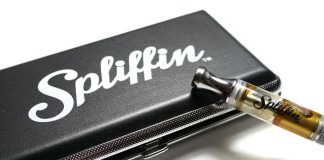 Dantes Fire from Spliffin Vape Review