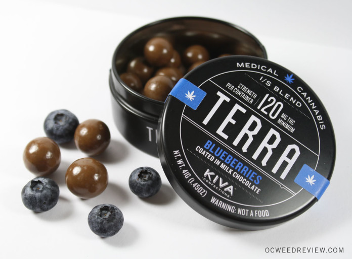 Terra Bites Chocolate Covered Blueberries from Kiva Confections Review