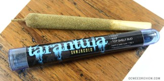 Girl Scout Cookies Tarantula Joint from Ganja Gold Review